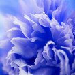 Abstract blue flower background - Stock Photo