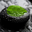 Zen stone and leaf with water drops — Stockfoto #1787936