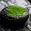 Zen stone and leaf with water drops - Stock Photo