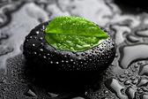 Zen stone en blad met waterdruppels — Stockfoto