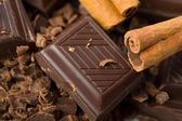Pieces of chocolate and cinnamon — Stock Photo