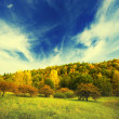 Autumn landscape - Stockfoto
