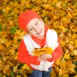 Beautiful little girl with autumn leaves — Stock Photo #1421202