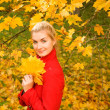Beautiful young woman in autumn forest — Stockfoto #1421226