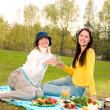 Two beautiful girls at picnic — Stock Photo