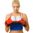 Portrait of a boxer girl — Stock Photo #1423126