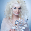 Snow queen with a magic twig — Stock Photo #1423188