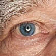 Picture of a human eye — Stock Photo #1728461