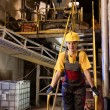 Factory female worker - Stock Photo