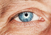 Picture of a human eye — Stock Photo