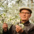Stock Photo: Happy elderly min garden
