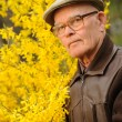Elderly man working in garden — Stock Photo