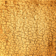 Dry soil texture — Stock Photo #1746643
