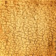 Stock Photo: Dry soil texture