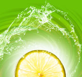 Lime slice on abstract background — 图库照片