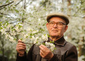 Happy elderly man in a garden — Stockfoto