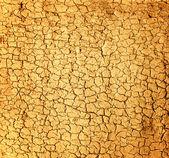 Dry soil texture — Stock Photo