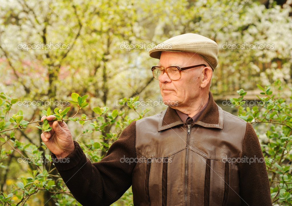 Elderly man working in garden — Stock Photo #1741477