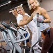 Group of jogging in a gym - Stock Photo