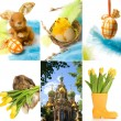 Easter collage — Foto Stock