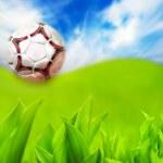Soccer ball on green grass — Stock Photo