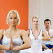 Group of doing yoga exercise — Stock Photo #2086405