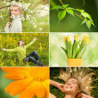 Spring collage — Stockfoto