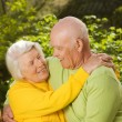 Senior couple in love outdoors — Stock Photo #2086777
