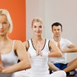 Group of doing yoga exercise — Stock Photo