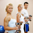 Group of doing fitness exercise — Stockfoto