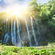 Sunrise over waterfall in wild forest — Stock Photo