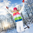 Royalty-Free Stock Photo: Winter fun