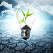 Foto Stock: Environment friendly bulb