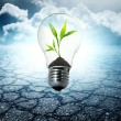 Environment friendly bulb - Stock Photo