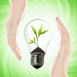 Environment friendly bulb — Stock Photo #2087804