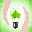Stock Photo: Environment friendly bulb