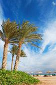 美しいビーチ ビュー — ストック写真