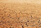 Consistenza del terreno secco — Foto Stock