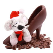 Chocolate slices, mouse in shoe — Stock Photo