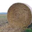 Stock Photo: Roll of straw in field