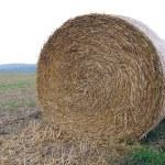 Roll of straw in field — Stock Photo #1417371