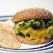 Veggie burger with chips — Stock Photo
