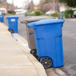 Blue is for recyclables — Stock Photo #1910186