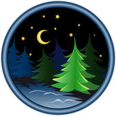 Night in the winter forest — Stock Vector