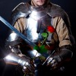 Knight looking at flower - Stock Photo