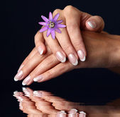 Woman hand with french manicure — Stock Photo