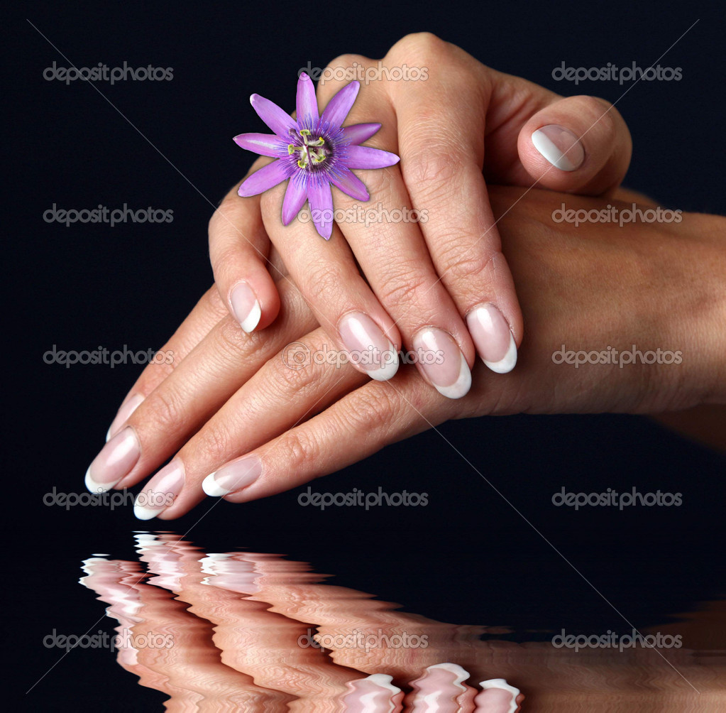 Beautiful woman hand with french manicure, over black background  Stock Photo #1528599
