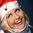 Stock Photo: Santa girl