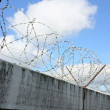 Barbwire and grey wall — Stock Photo