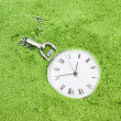 Old pocket watch buried in green sand — Stock Photo #1624001